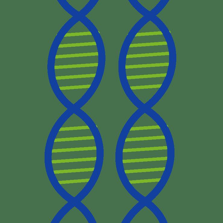 Test genetici di prevenzione milano Farmacia boccaccio